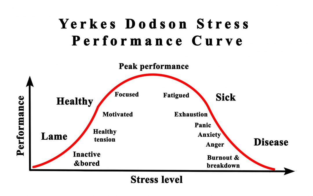 Let's Understand The Yerkes-Dodson Law