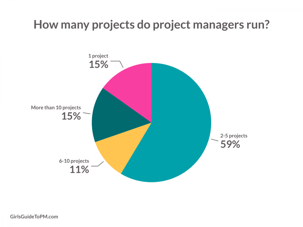 pie chart showing how many project people run