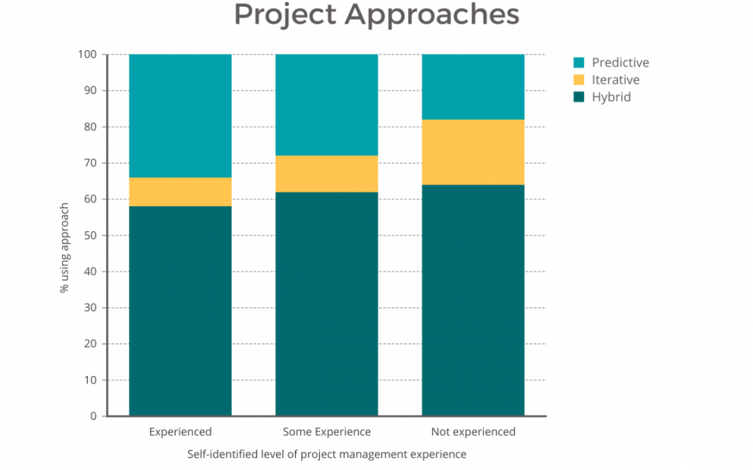 The 2021 Project Management Report