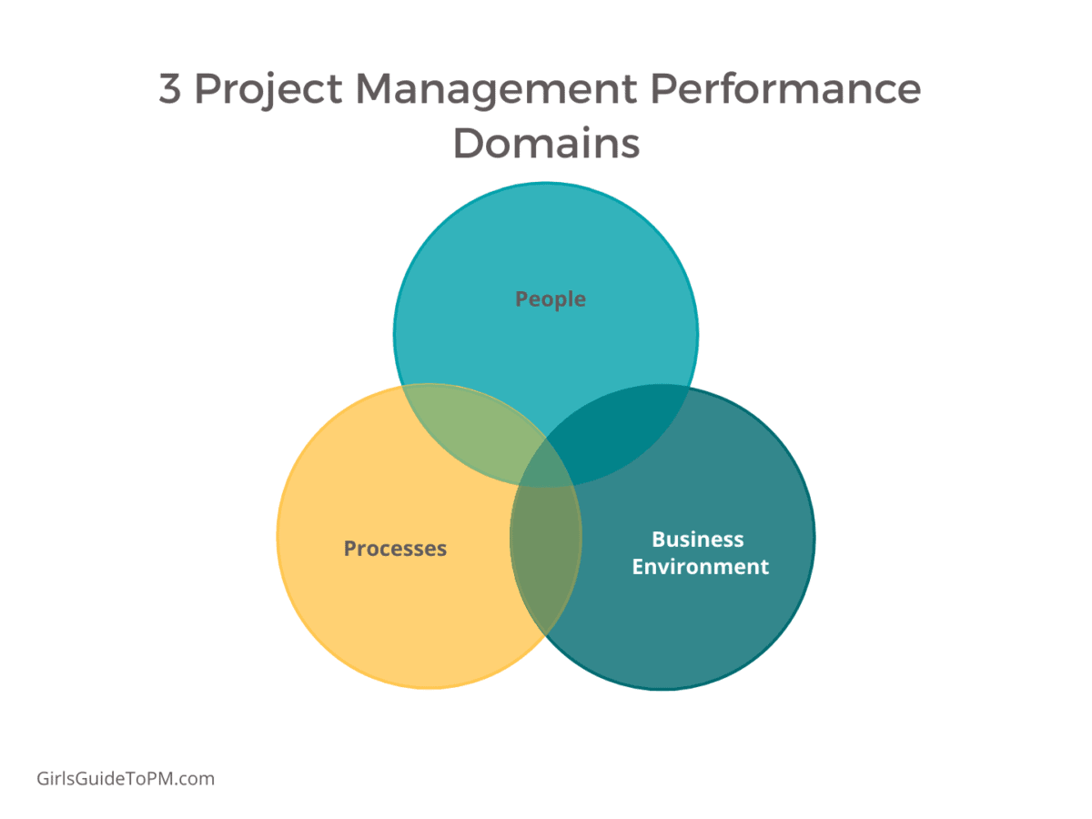 project management performance domains